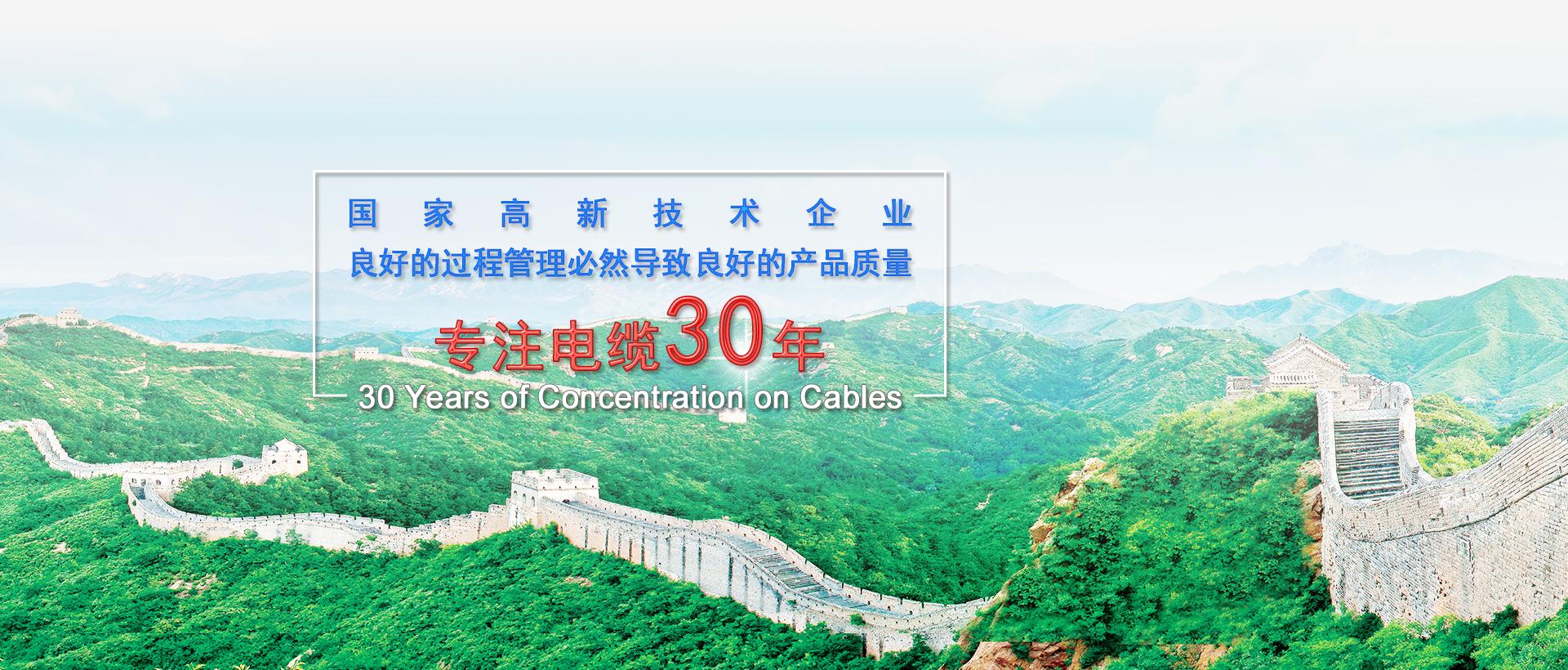 优质电缆厂家